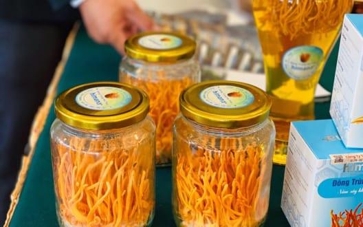 Đông trùng hạ thảo – kết quả diệu kì của quá trình sinh học