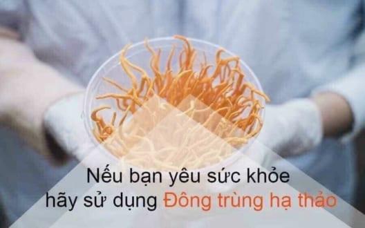 Tác dụng của từng đối tượng khi sử dụng đông trùng hạ thảo